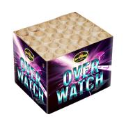 Overwatch 30 shots